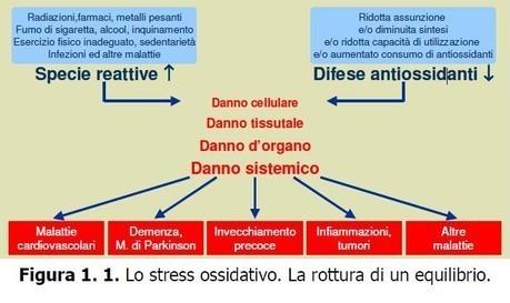 Misurazione stress ossidativo - Skin Center Pescara